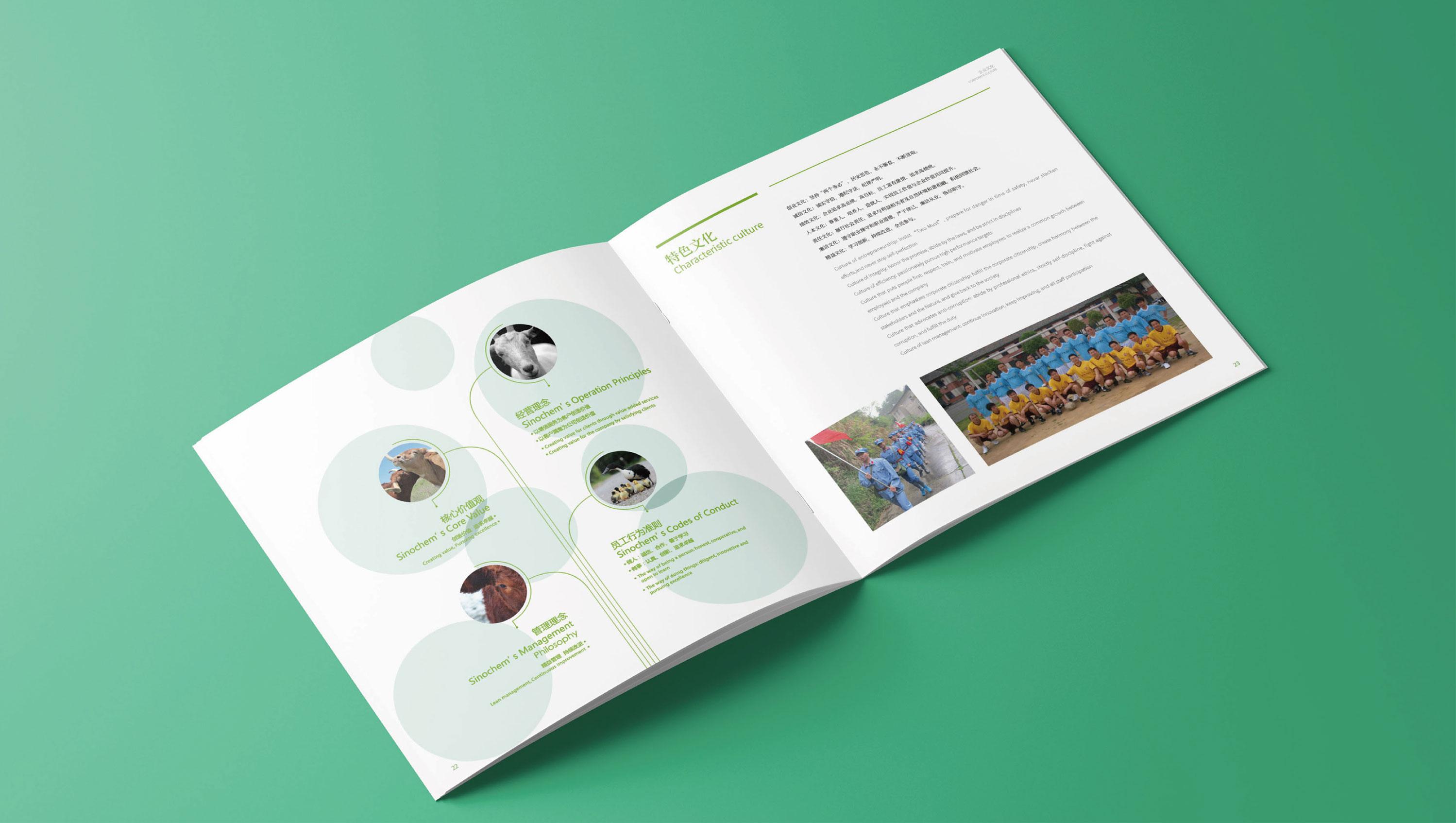 懿木品牌设计-合盈科技23