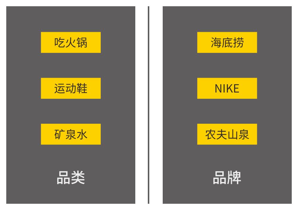 品类和品牌的需求