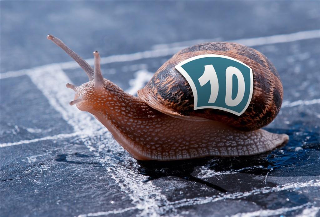 蜗牛.jpg